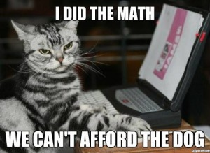 math cat can't afford dog